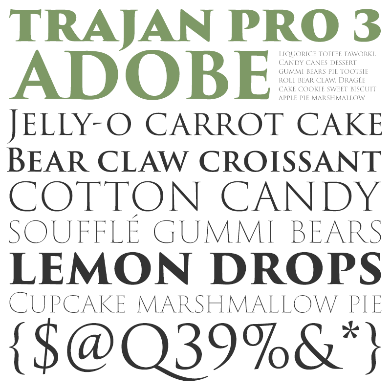 Adobe-TrojanPro3